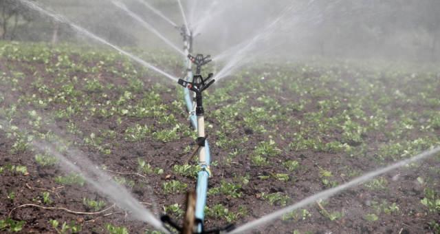 Resultado de imagem para Governo autoriza ocupação de produtores em polo de irrigação na Bahia