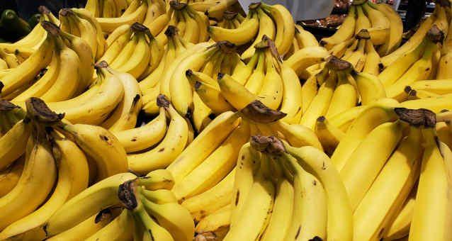 Banana Agro