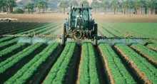 Agronegócio Defensivo Agrotóxico