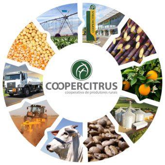 coopercitrus