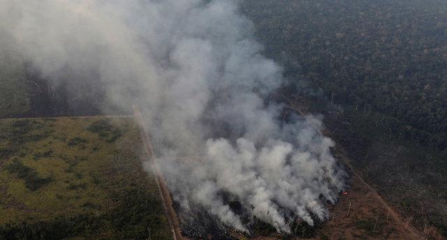 Amazônia Queimadas Florestas