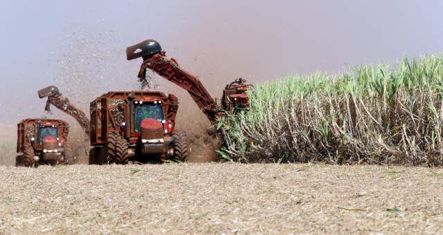 Agricultura Máquinas Veículos Cana-de-Açúcar