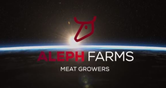 aleph-carne