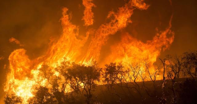 Fogo california