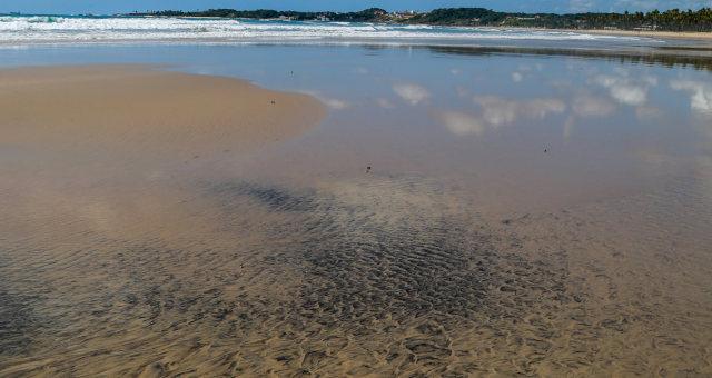 Nordeste Petróleo Brasil Poluição Litoral
