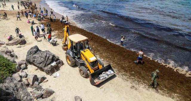 Derramamento de petróleo na praia de Itapuama Beach, em Cabo de Santo Agostinho (PE) Nordeste