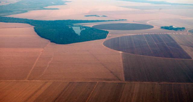 Vista aérea de plantação de soja no Mato Grosso