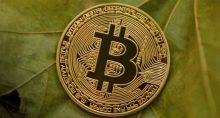bitcoin folha