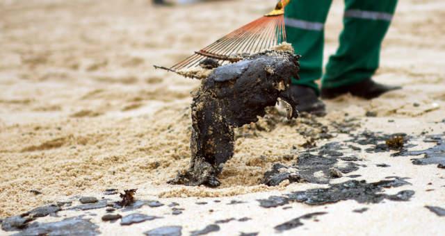 Mancha Petróleo Poluição Nordeste