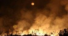Incêndio na floresta amazônica, no Estado do Amazonas Amazonia