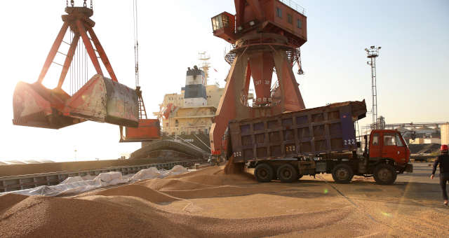 Soja importada pela China