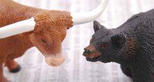 bear bull market mercado de alta baixa