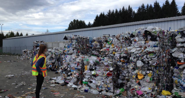 Sustentabilidade Reciclagem Meio Ambiente