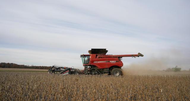 Colheita de soja em fazenda em Roachdale, Indiana