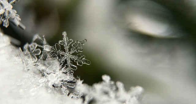 gelo inverno floco