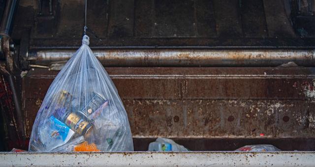 Sacolas Plásticas Sustentabilidade Poluição
