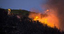 Desmatamento Meio Ambiente Fogo