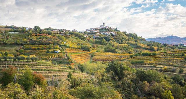 Vinhos Bebidas Europa Eslovênia Turismo