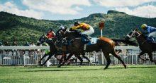 Corrida de cavalos, competição, disputa, liderança, valorização