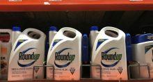 Roundup Bayer