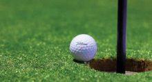 bolinha em campo de golf, riqueza, mira, vitória, pontaria, alta