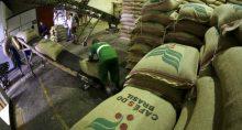 Café - Exportação