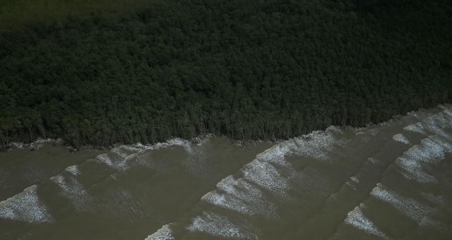 Meio Ambiente Amazônia