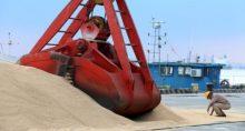 Agronegócio Grãos Soja Exportações Porto