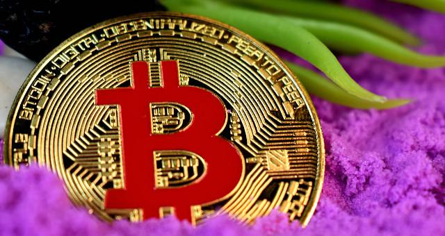 ondulação previsão de criptomoeda lucro confidencial melhor site para o dia do bitcoin