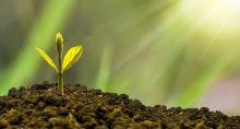 Sustentabilidade-Investimentos