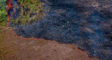 Queimada Amazõnia