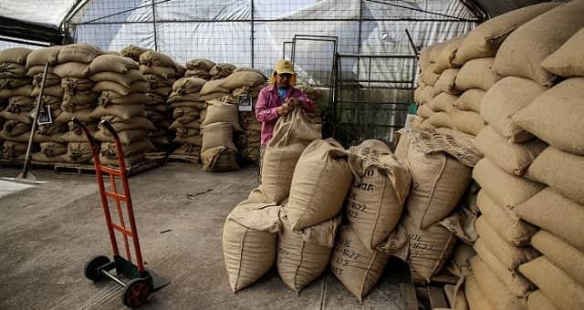 sacas de café-exportações