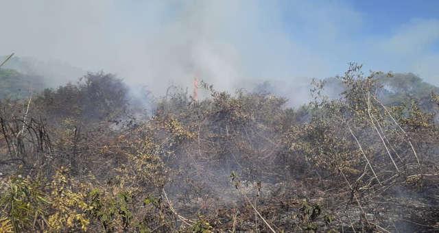 Pantanal Incêndios