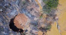 Garimpo Mineração Desmatamento Amazônia