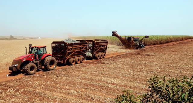 Agronegócio Agricultura Cana-de-Açúcar Etanol