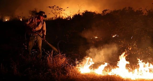 Incêndios, Pantanal