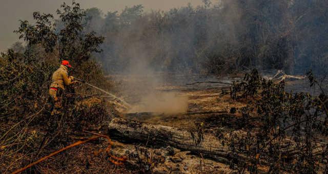 Pantanal-Queimadas-Meio Ambiente