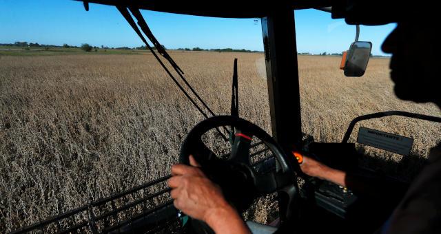 Agronegócio Agricultura Trigo Grãos