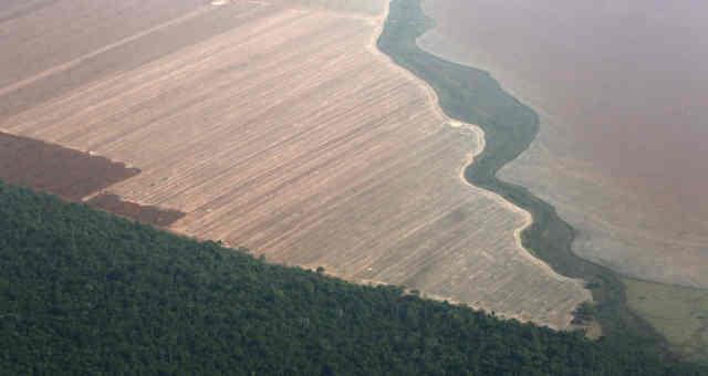 Vista aérea de região produtora de grãos em Mato Grosso