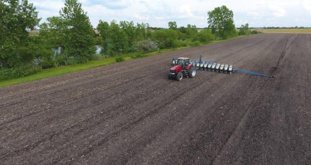 Agronegócio Agricultura Grãos Trigo