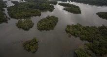 Trecho do rio Xingu