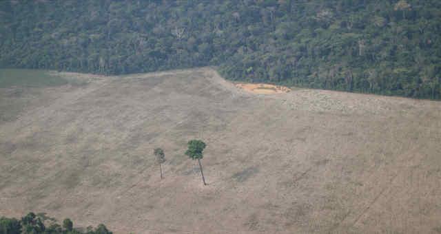 Vista aérea de área desmatada na floresta amazônica perto de Porto Velho 14/08/2020