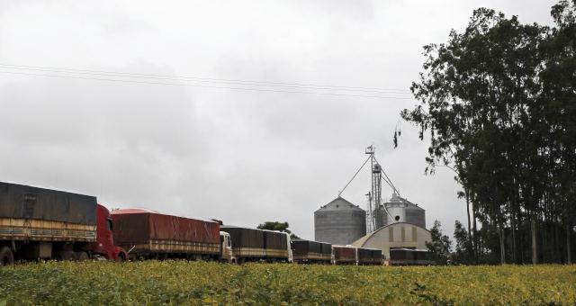 Caminhões em Campo Verde