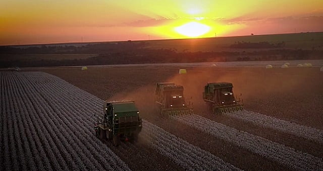 Agricultura, Agronegócio, SLC Agrícola