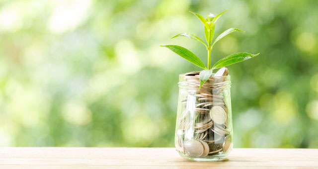 Planta crescendo de dinheiro ESG Expert