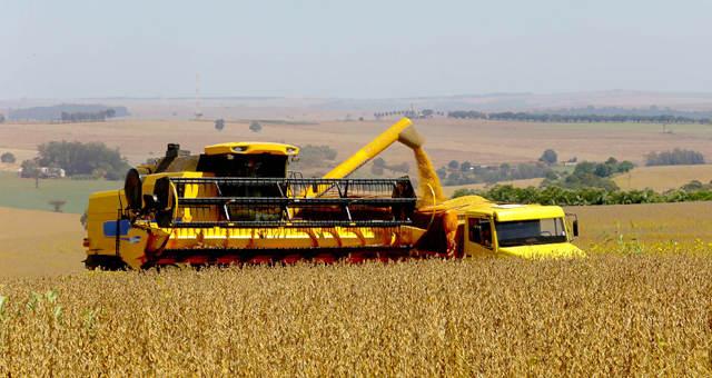 Agricultura Grãos Soja