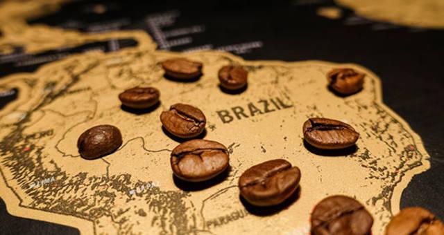 Café Grãos Commodities