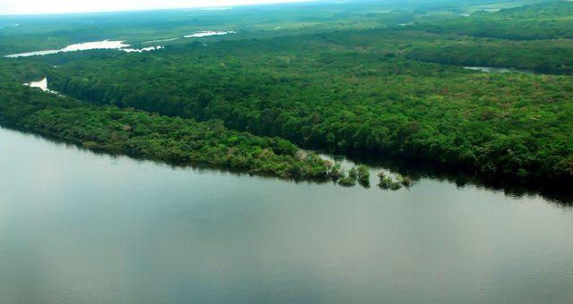 Amazônia Meio ambiente