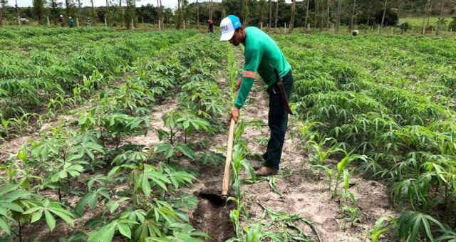 Agricultura Lavoura