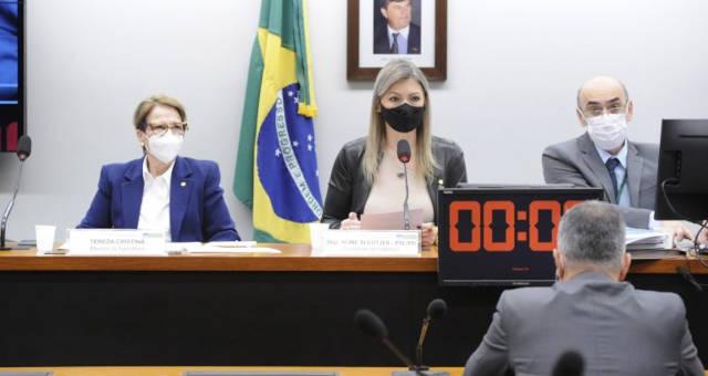 Tereza Cristina Comissão Câmara
